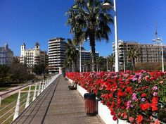 Valencia - the Puente de Flores (Flower Bridge)