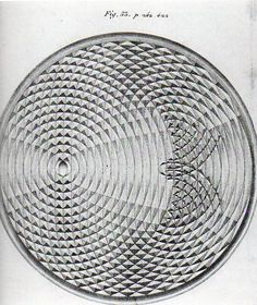 Adding mercury to mercury: the sensational drawings by the Weber brothers as they observed the changing wave fronts made by a drop of mercury into a pool of mercury.
