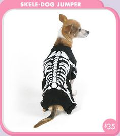 Skele-Dog Jumper dog Costume Shop - Holiday + Special Occasion - New + Noseworthy! - trixie + peanut