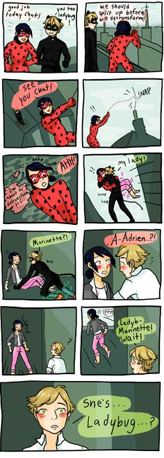 Miraculous Ladybug: Image Gallery | Know Your Meme