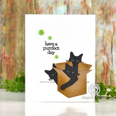 Impression Obsession Cards, Cat Cards, Gift Certificates, Cat Love, Giveaway, Kitty, Stamping, Fall, Animals