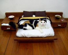 Pet Platform Bed by Cedel