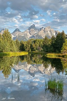 The Snake River flows quietly through Grand Teton National Park in Wyoming, USA. In many places the water is so calm and glassy that a perfect reflection of the Teton Range is often seen. This picture of the Tetons at first light was taken from Schwabacher Landing, a very popular place for photographers.
