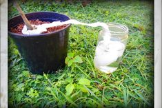 A Gardening Hack That Will keep Your Plants Hydrated Borax Cleaning, Diy Home Cleaning, Bathroom Cleaning Hacks, Household Cleaning Tips, Cleaning Recipes, House Cleaning Tips, Diy Cleaning Products, Cleaning Solutions, Diy Cleaners