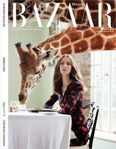 British Harper's Barzaar Limited Edition March 2014 | Alana Zimmer by Liz Collins | #alanazimmer #magazinecovers #lizcollins