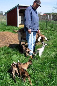 Five baby goats: Rare goat quintuplets born at Oregon farm