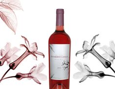 Graphic Design Illustration, Behance, Bottle, Corporate Identity Design, Wine Tags, Digital Illustration, Wine, Illustrations, Flask
