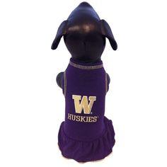 NCAA Washington Huskies Cheerleader Dog Dress Team Color XXSmall ** Click image to review more details.