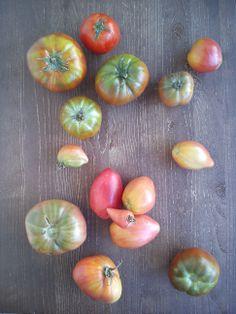 Con curvas y pliegues y suaves hondonadas..  De mi adorada Gioconda Belli.  Huerta ecológica Surco a surco.