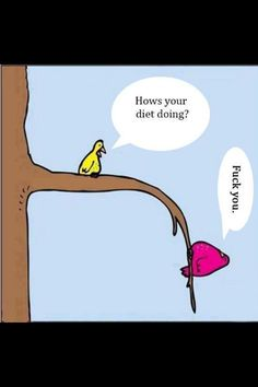 Diet humor. #funny #fitness #workout #birds #fat #diet