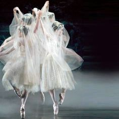 Repetto Inspirations - 'Ballet Blanc'