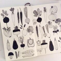 Sketch journal, doodle inspiration, sketchbook inspiration, art drawings, s Vegetable Illustration, Art Et Illustration, Food Illustrations, Doodle Inspiration, Sketchbook Inspiration, Doodle Drawings, Doodle Art, Vegetable Drawing, Vegetable Tattoo