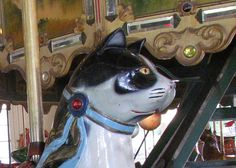 Take a ride on the Carousel Cat - Herschell-Spillman Carousel, Balboa Park, San Diego, CA. Photo by ceropegia, via Flickr.  From: http://www.flickr.com/photos/picture_taker/6150924511/