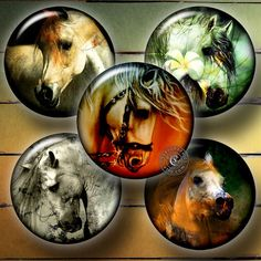 Horse - Digital Collage Sheets CG-661C - 1.5 inch, 1.25 inch, 30mm, 1 inch and 25mm circles Printables  for Pendants, Cabochons, Bottle Caps