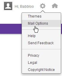 Disposable Email address will save you from the Unwanted spam emails and you need a dummy mail id for long time period you can do it by yahoo mail service