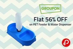 Get 56% OFF on PET Feeder & Water Dispenser by Groupon. One side contains a food bowl and the other a self-filling water reservoir in this product.  http://www.paisebachaoindia.com/flat-56-off-on-pet-feeder-water-dispenser-groupon/