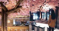 Blossom Bar Il y a un immense arbre rose dans ce nouveau resto montréalais et c'est #Instagoal featured image