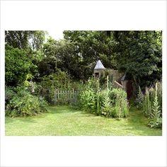 lovely natural garden