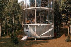 Блог - Казахский архитектор разработал стеклянный дом, построенный вокруг дерева