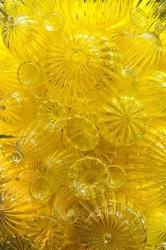 Yellow glass art by the talented Dale Chihuly. Dale Chihuly, 3 Chakra, Yellow Brick Road, Yellow Submarine, Shades Of Yellow, Colour Yellow, Yellow Art, Lemon Yellow, Happy Colors