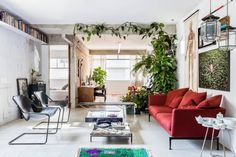 Eclectic Apartment Showcases Collector's Artifacts - http://freshome.com/eclectic-apartment-showcases-collectors-artifacts/