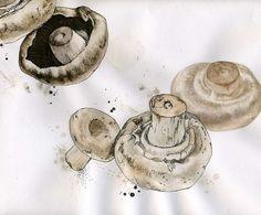ink drawings Mushroom Illustration Drawing by WildArtCapture Mushroom Drawing, Mushroom Art, Botanical Illustration, Illustration Art, Design Illustrations, Arte Gcse, Nature Drawing, Wall Drawing, A Level Art