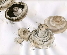 Mushroom Illustration Drawing by WildArtCapture | Julia Ruffles, line drawing with water colour