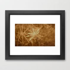 Sun of Desperation Framed Art Print by Fenia Stavra - $34.00