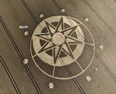 Crop-circle-at-Haselor-Warwickshire-19th-July.jpg (800×649)
