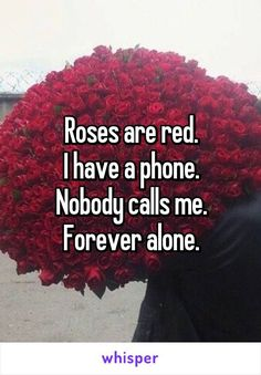 Red roses Most vegetables which can be grown need very much sun as a way to grow well and properly. This rings true for some kinds of the flowers. Roses Are Red Funny, Roses Are Red Memes, Funny Poems, Funny Quotes, Funny Prayers, Red Roses Quotes, Whisper Confessions, Whisper App, Funny Comebacks