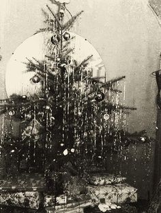 Roberta's Realities: A Christmas Tree Style! Christmas Tree Images, Vintage Christmas Photos, Christmas Time Is Here, Old Fashioned Christmas, Christmas Past, A Christmas Story, Vintage Holiday, Christmas Pictures, Xmas Photos