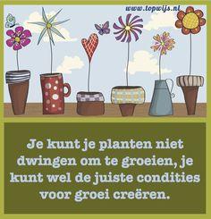 Je kunt je planten niet dwingen om te groeien.