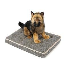 "Bowsers Luxury Crate Mattress Dog Bed Size: Large (36"" L x 24"" W), Color: Kensington Plaid"