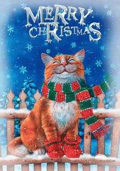 The perfect Snow Cat MerryChristmas Animated GIF for your conversation. Discover and Share the best GIFs on Tenor. Christmas Scenes, Christmas Animals, Christmas Cats, Christmas Pictures, Christmas Greetings, Christmas Time, Vintage Christmas, Merry Christmas, Gif Noel