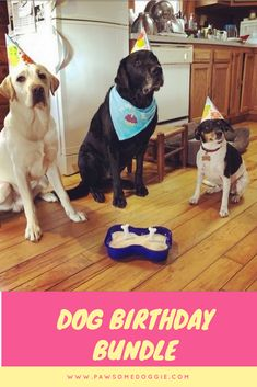 Its A Dog Birthday Party In Box But We Call It Bundle