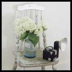 Hydrangeas! and a vintage camera. LOVE. #countryliving #dreambedroom
