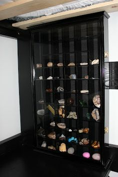 A Chuppdate (Cheetos and Chickens and Colsons) Crystals Minerals, Rocks And Minerals, Crystals And Gemstones, Stones And Crystals, Shell Display, Display Shelves, Display Ideas, Rock Collection, Collection Displays