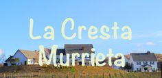 Lovely La Cresta 2-on-1 Cape Cod style estate home with vineyard. #lacrestamurrietahomes, #murrietaluxuryhomes #lacrestahomesforsale