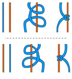 well illustrated, step by step directions for basic knots Cubs  need to learn