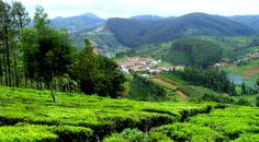 Hill Station Packages in ooty, hill station tour packages ooty, tour packages hill stations ooty, hill station holiday packages ooty, hill station tour packages in ooty