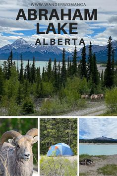 Hiking Spots, Camping Spots, Hiking Trails, Lake Camping, Camping And Hiking, Vacation Trips, Vacations, Alberta Travel, Wander Woman