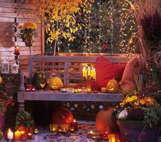 Red, lanterns, candles, flowers, red grass, pillows, old bench, jack-o-lanterns, hanging vines, tree, leaves on floor, large pot.