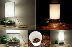 DIY lamp garden