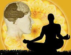 El yoga es una antigua disciplina que tiene como objetivo equilibrar cuerpo, mente y alma. Desde que empieces a practicarlo, podrás notar cambios: incremento de la flexibilidad, la fuerza física, la calma mental y la paz en general. Por esta razón, tanto a ti como a tu cerebro, ¡os va a encantar el yoga!