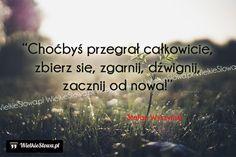 Choćbyś przegrał całkowicie... #Wyszyński-Stefan,  #Bóg-i-wiara, #Człowiek, #Doświadczenie, #Działanie, #Klęska,-porażka,-błędy, #Motywujące-i-inspirujące