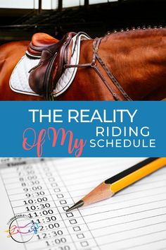 Everyone thinks they have the best horseback riding schedule. The reality is, the best schedule is the one that works for you and your horse. Here is what my riding schedule looks like as a busy adult amateur. Horseback Riding Tips, Horse Riding Tips, Two Horses, All About Horses, Riding Lessons, Strength Training Workouts, Blog Writing, Equestrian, Schedule