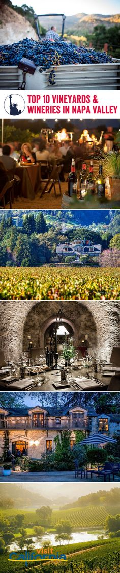 Wine connoisseurs no doubt know about Napa Valley's incredible vineyards and divine wines, but which wineries serve the best glass? We've got a comprehensive list of vineyards we think are well worth visiting