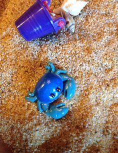 OOAK Miniature Crabs Fairy Garden Accessory Terrarium