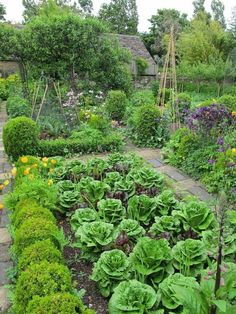 Edible Landscaping: Kitchen Garden Landscaping and Garden Project Idea Project Difficulty: Simple MaritimeVintage.com #Landscape #Garden #Gardening #Landscaping