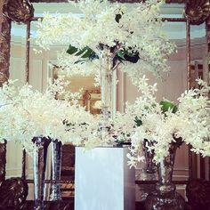 Billowy white blossoms add a breath of fresh air to @Mandy Dewey Seasons Hotel Los Angeles at Beverly Hills